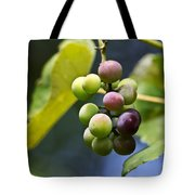 Grapes On The Vine Tote Bag by Christina Rollo