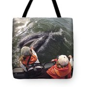 Gray Whale Calf And Tourists Baja Tote Bag by Flip Nicklin