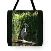 Great Blue Heron Tote Bag by Ellen Henneke