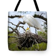Great Egret Chicks - Sibling Rivalry Tote Bag by Carol Groenen