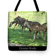 Greater Kudu Tote Bag by Chris Flees