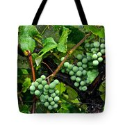 Growing Season Tote Bag by Frozen in Time Fine Art Photography