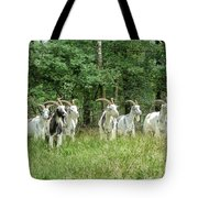 Guardians Of The Forest Tote Bag by Mountain Dreams