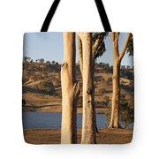 Guardians Of The Lake Tote Bag by Linda Lees