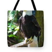 Guarding Liberty Tote Bag by Roger Reeves  and Terrie Heslop