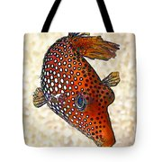 Guinea Fowl Puffer Fish Tote Bag by Bill Caldwell -        ABeautifulSky Photography