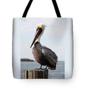 Handsome Brown Pelican Tote Bag by Carol Groenen