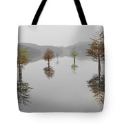 Hanging Garden Tote Bag by Debra and Dave Vanderlaan
