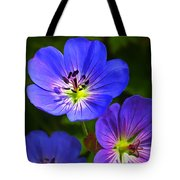 Happy Face Tote Bag by Bill Caldwell -        ABeautifulSky Photography