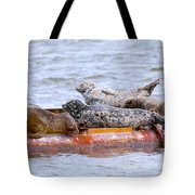Harbour Seals Lounging Tote Bag by Sharon Talson