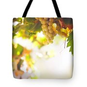 Harvest Time. Sunny Grapes I Tote Bag by Jenny Rainbow
