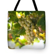 Harvest Time. Sunny Grapes Iv Tote Bag by Jenny Rainbow