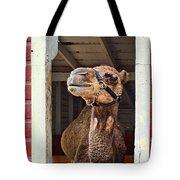 Haughty Tote Bag by Nikolyn McDonald