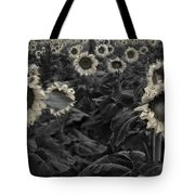 Haunting Sunflowers Field 3 Tote Bag by Dave Dilli