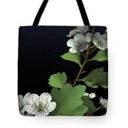 Hawthorne Tote Bag by Cynthia Decker