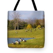 Heading South Tote Bag by Julie Palencia