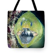Hello There Tote Bag by Jean Noren