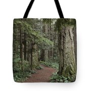 Heritage Forest Tote Bag by Randy Hall