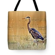 Heron At Sunset Tote Bag by Marty Koch
