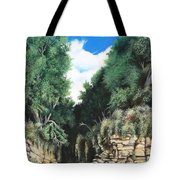 Hidden Canyon Tote Bag by David Neace