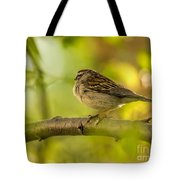 His Eye Is On The Sparrow Tote Bag by Lois Bryan