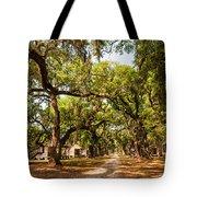 Historic Lane Tote Bag by Steve Harrington