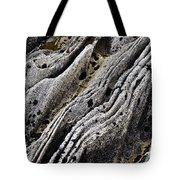 History Of Earth 11 Tote Bag by Heiko Koehrer-Wagner