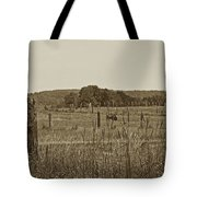 Home On The New Range Tote Bag by Skip Willits