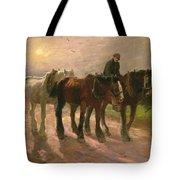 Homeward Tote Bag by Harry Fidler