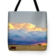 Horses On The Storm Tote Bag by James BO  Insogna