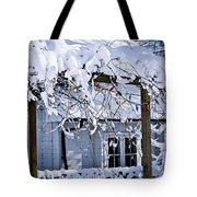 House Under Snow Tote Bag by Elena Elisseeva