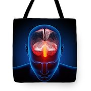 Human brain Tote Bag by Johan Swanepoel