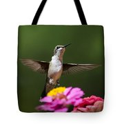 Hummingbird Tote Bag by Christina Rollo