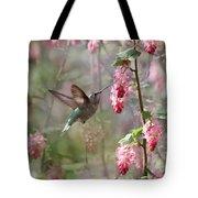 Hummingbird Heaven Tote Bag by Angie Vogel