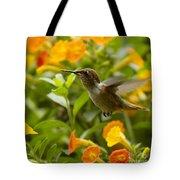 Hummingbird Looking For Food Tote Bag by Heiko Koehrer-Wagner