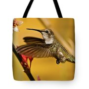 Hummingbird Tote Bag by Robert Bales