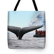 Humpback Whale Fluke  Tote Bag by Tony Beck