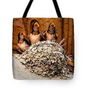 Hungry Baby Swallows - Antelope Island - Utah Tote Bag by Gary Whitton