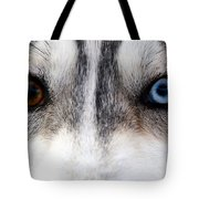 Husky Eyes Tote Bag by Keith Allen