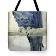 Hyacinthine Macaw Tote Bag by Henry Stacey Marks