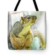 I Wasn't Me   The Cardinal Did It Tote Bag by Debbie Portwood