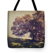 I Wish You Had Meant It Tote Bag by Laurie Search
