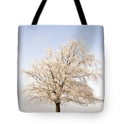 Iced Tree Tote Bag by Anne Gilbert