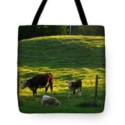 In The Field Tote Bag by Randi Shenkman
