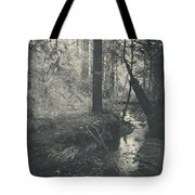 In This Silence Tote Bag by Laurie Search