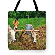 Indian farmer plowing with bulls Tote Bag by Image World
