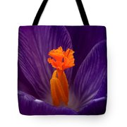 Interior Design Tote Bag by Rona Black