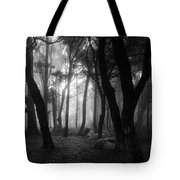 Into The Mystic Tote Bag by Marco Oliveira