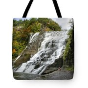Ithaca Falls Tote Bag by Christina Rollo