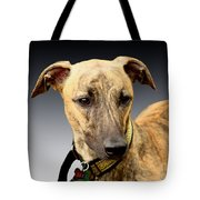 Jake Tote Bag by Linsey Williams